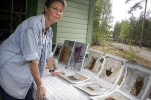 Eva Sollander är medlem i konstnärskollektivet Sidsjön från Sundsvall. I fyra dagar har de skapat och alla har fyndat på skroten i närheten, själv har hon använt rostiga flagor i bilderna.