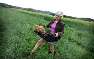– Man blir glad av att äta sin egen odlade mat, säger Anna Lorentzon. Här är hon på väg över åkern med nyskördade lökar och morötter. Foto: Staffan Björklund