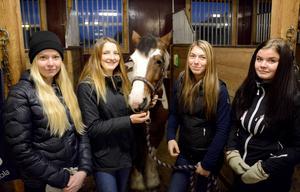 Lina Olofsson, Gry Jälkentalo, Moa Carlsson och Emelie Hermansson går hästutbildningen på Torstas gymnasieskola. Efter att skolan sålde sina egna hästar i somras har kvaliteten på utbildningen sjunkit markant enligt eleverna – som nu känner sig lurade och omotiverade.