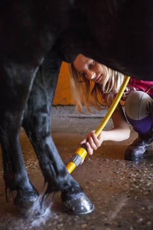 Madelene Olofsson duschar hästen Fabian.