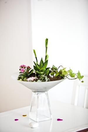 Ett hemmabygge. Det här blomsterarrangemanget fick Lena idén till i en affär, åkte hem och tillverkade det av en salladsskål och blomvas.
