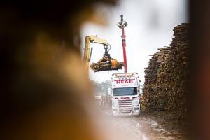 Utredningen om timmerterminal i Böle har dragit ut på tiden, men är nu färdigställd, enligt Rolf Berg, utvecklare vid Ljusdals kommun.