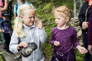 Nova Videvind från Rotebro och Ingrid Jakobsson från Sundbyberg luktade på en ticka.