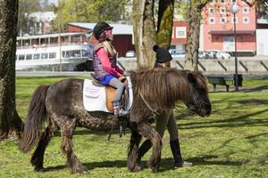 I Socitetsparken kunde barnen ägna sig åt ponnyridning.