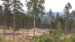 Stora ytor skog har röjts för att göra plats för de nya nedfarterna.