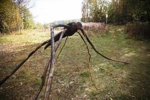 I filmen har myggorna en central roll då de bidrar till att huvudrollsinnehavaren blir galen. I filmen bygger mannen stora myggskulpturer, en står nu på toppen av Ansätten.