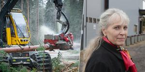 Enligt Log Max fabrikschef i Grangärde, Ulla Hannerz, har företaget aldrig tidigare drabbats av en liknande stöld.
