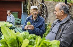 Ivar Andersson och Ali Kacmaz säljer grönsaker.