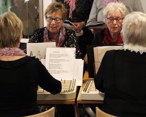 Sätracittrorna har mellan 70 och 100 låtar på repertoaren.