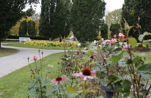 Träningspassen kommer att hållas i Stadsparken på en gräsyta mellan minigolfbanan och lekparken.