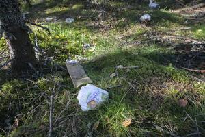 Blöjor vittnar om att små barn bott i bärplockarlägren norr om Tönnebro.