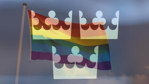 RFSL hoppas att andra länder ska följa riksdagens beslut.  Bilden är ett montage. Foto: TT/Mostphotos