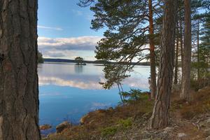 Strandskydd behövs inte i hela landet, anser Centerns toppnamn i Västmanland. Bilden: Åmänningen vid Dunshammar.Foto: Jörgen Hjerpe