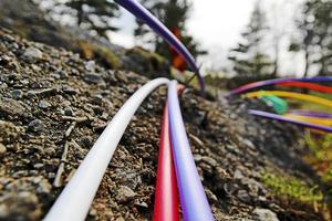 Utbyggnaden av snabbt bredband går alldeles för långsamt anser Region Västernorrlands tillväxtchef Maria Lidgren.