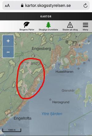 Här mellan Bönan och Engeltofta, alldeles nära strandvillorna, hade Gävle kommun tänkt avverka. Områdena är markerade med en svag kontur på Skogsstyrelsens karta.