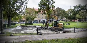 På onsdagseftermiddagen var vattnet borta från den ena sidan av dammen i Vilhelminaparken.