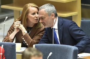 Både Centerpartiet och Liberalerna – där Annie Lööf och Jan Björklund är partiledare – har presenterat sina valanalyser. Foto: Claudio Bresciani/TT