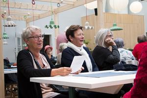 Iréne Forslund och Lena Stiernborg tycker att det är fantastiskt att vara pensionärer. Men konstaterar att pensionssystemet är svårt att förstå och att många som liksom dem jobbat i vården får väldigt låg pension.