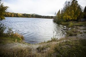 Ny dejtingsajt fr odlingsintresserade   Gteborgs-Posten
