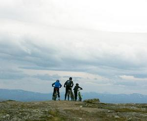 Miljöpartiet i Åre vill underlätta för bland annat vintercykling i området. Foto: Elisabet Rydell-Janson