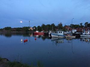 Månsken över grisslehamn. Foto: Staffan Carlweitz