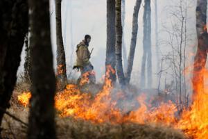 En gräsbrand kan snabbt utvecklas till en hus- eller skogsbrand. Foto: Adam Ihse, Scanpix.