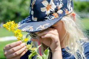 Hur ser blomman ut inuti? Det ser Eli genom en lupp.