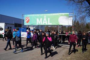 Gå-lunka-löp för Ellie lockade cirka 300 deltagare. Här har starten precis gått. Foto: Läsarbild