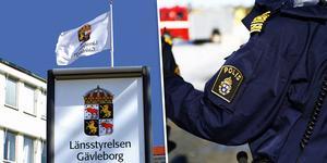 Länsstyrelsen i Gävleborg har tillsammans med polisen nu omhändertagit den hund som ska ha attackerat en kvinna i Söderhamn.