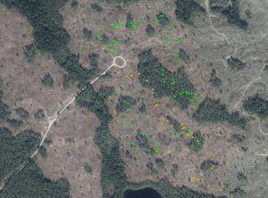 Kartan – från Naturskyddsföreningen – med fyndplatserna för de 40  signalarterna och rödlistade arterna.  Föreningen vill visa att många av arterna fanns i den skog som avverkats.
