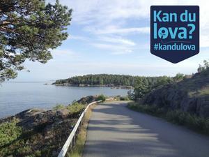 Alla partier i Nynäshamns kommun är överens om att det inte ska byggas några höga hus på Strandvägen.