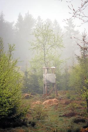 Ett jakttorn i dimman.
