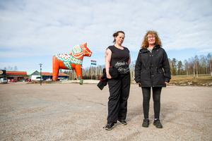 Sara Olsson och Sanna Lundgren från Avesta vill hjälpa andra människor som inte kan ta sig till affären av olika orsaker.