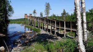 Foto: Tor PerssonLillsjön, återskapad i alla sin prakt. Här finns också ett fågeltorn som fått tillgänglighetspris.