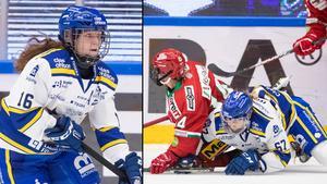 Foto: Daniel Eriksson/Bildbyrån.