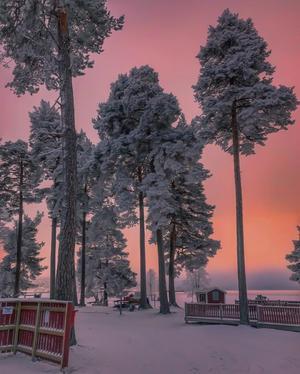 Bild från Rättviks Camping! Färgerna är fantastiska denna vackra eftermiddag. Älskar frosten i träden.