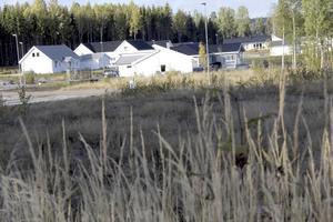 Elva osålda tomter. Nu går villaområdet Norra sjöhagen in i försäljningsetapp två. Tomterna ligger här i förgrunden.