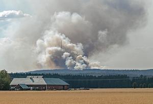 Forskare bedömer att kostnaderna till följd av förstörda skördar, översvämningar och bränder skulle överstiga kostnaden för en snabb omställning till fossilfritt med stor marginal, skriver Johanna Thurdin (MP).