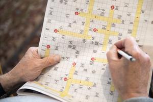 Att lösa korsord och sudoku är bra hjärngymnastik. Flera pensionärsföreningar anordnar träffar där man löser korsord tillsammans. Foto: Henrik Montgomery/TT