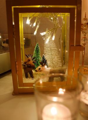 I ljuslyktan har renarna flyttat in lagom till jul.