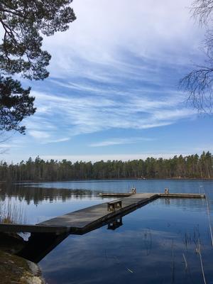 Paddsjön i Baltora inför sommarens bad. Foto: Clary Eriksson
