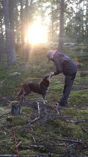 Personspår i skogen med hundarna.