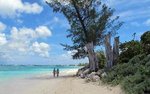 Turister på den sju mil långa sandstranden i skatteparadiset Cayman island. AP Photo/David McFadden/Scanpix
