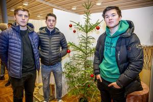 UF-företaget Hjulgran hugger och kör hen din julgran. Från vänster: William Frankzén, Simon Eriksson och Alexander Öhman.