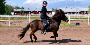 Moa Johansson från Solvarbo har ridit  islandshästar sedan hon var sju år.