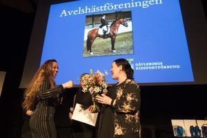 Sigrid Bergåkra, Vallsta, uppmärksammades på ridsportgalan för sin hästuppfödning av Hästavelsföreningens Susanna Theuer.