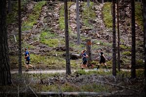 Gå. lunka, löp... det viktiga är att komma i mål, eller åtminstone kämpa väl.
