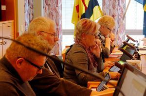 Ewa Lindstrand, längst bort, vill ha tydligare medborgarförslag.