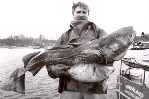 1998 fångades en rekordstor torsk på 37 kilo av fiskare i Grisslehamn. På plats för att ta porträtt av fångst och fiskare Dick Tillberg, fanns Erik Eriksson. Foto: Erik Eriksson