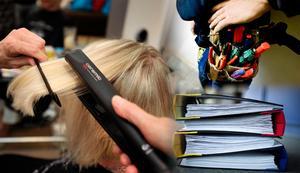 Det skapas mängder av jobb i små och medelstora företag, men som läget är nu motarbetas företagare av regeringen, menar Anne-Li Sjölund (C).